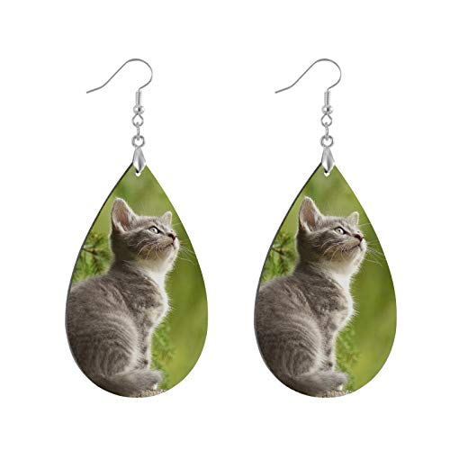 Curious Cat Natural Wood Teardrop Earrings Water Drop Eardrops, Lightweight Pendant Earrings, Ear Studs Bohemia Danglers for Women