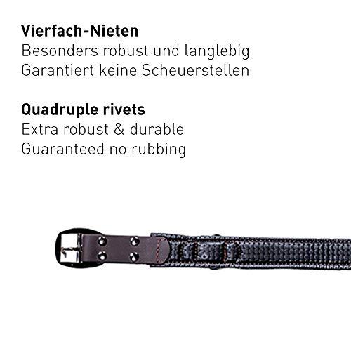 PetTec Hundehalsband aus Trioflex™ mit Polsterung, Braun, Wetterfest, Wasserabweisend, Robust - 5