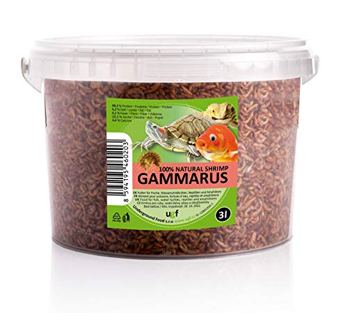 UGF - Premium Gammarus Bachflohkrebse getrocknet, 3 Liter Eimer, Insektenfutter für Schildkröten, Fische, Vögel, Hamster, Igel, Koi und Ratten – ohne Konservierungs- und Farbstoffe