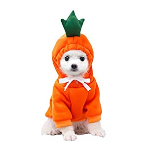 Pet Clothes, Dogs Hooded Sweatshirt Fruit Warm Coat Sweater Cold Weather Costume for Puppy Small Medium Large Dog (XS, Orange Carrot)