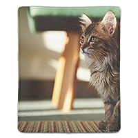マウスパッド 滑り良い 滑り止め おしゃれ 水洗い PC ラップトップ オフィス用 ゲーム向け 子猫 レーザー&光学式マウス対応 180*220*3mm (抗菌性?静電特性に優れています)