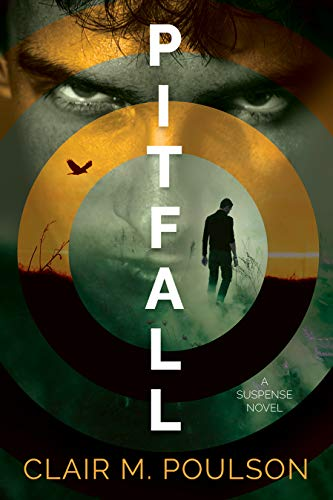 Pitfall (English Edition)