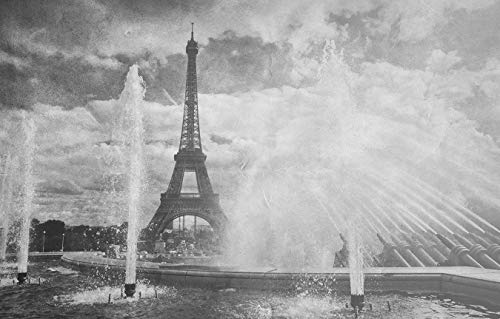 Bilderdepot24 Fototapete selbstklebend Eiffelturm im Retrostyle - schwarz weiß 155x100 cm - Wandbild Wohnzimmer - Wahrzeichen am Trocadero Brunnen
