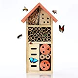 Nature's Buddy Insect Hotel S - 13x8.5x26cm - Eco-Friendly Bug House for Bees Butterflies <span class='highlight'><span class='highlight'>Insects</span></span> in Garden - Kid Friendly Weather Resistant Hanging Bee Home from Natural Wood