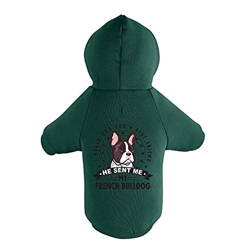 BedDog® Hoodie für Hunde, Sweater für Französische Bulldogge, Pullover mit Kapuze, Hunde-Mantel, Loch für Leine, Bedruckt - grün, XL