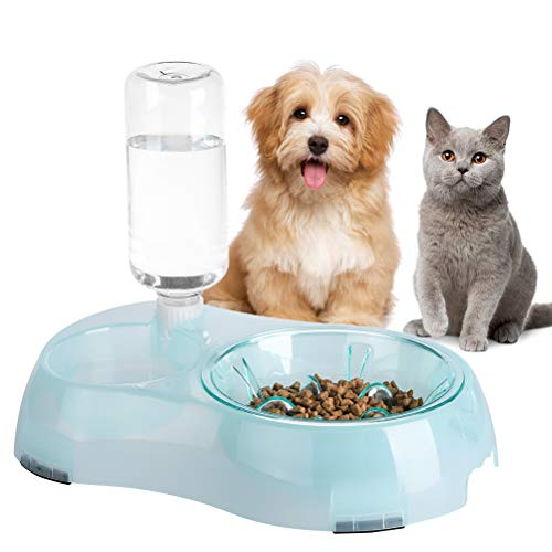 Cats Food Water Bowl