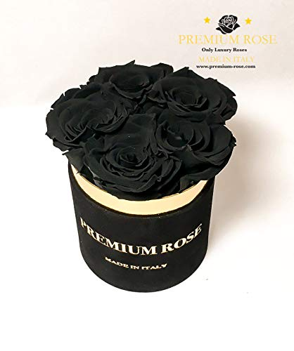 Premium box 5 rozen gestabiliseerd zwart in zwarte doos van fluweel rond zwart echte rozen houden jarenlang