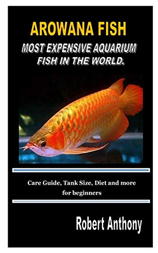 AROWANA FISH MOST EXPENSIVE AQUARIUM FISH IN THE WORLD.: Care Guide, Tank Size, Diet and more for beginners