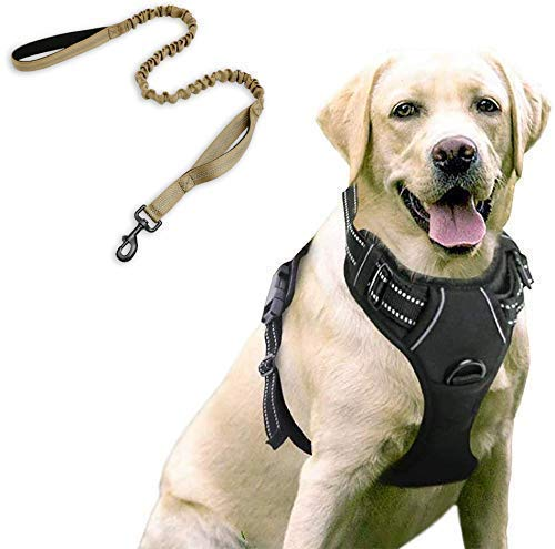 rabbitgoo Dog Harness & Tactical Bungee Dog Leash - Adjustable No Pull Soft Padded Dog Vest with Leash Clips (L) | Safety and Comfort Elastic Leads Rope for Military Dog Training