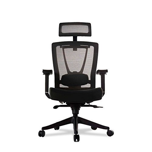 Autonomous Premium 2021 Ergonomic Office Chair: Lumbar Support, Adjustable Seat, Headrest, and Armrests, Executive Swivel, Responsive Mesh Back, Thick Cushion, 350 lbs Capacity, Medium, Full Black