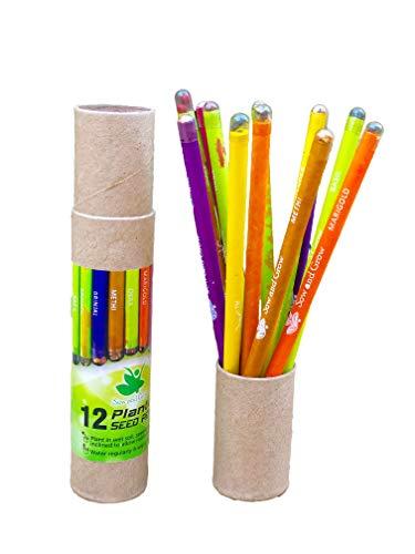 Sow and Grow Lápices De Papel Reciclado De Semillas Plantables Con Una Caja De Lápices Reutilizable Gratuita (Paquete De 12 Lápices) | Para Escribir, Dibujar, Esbozar |Respetuoso Del Medio Ambiente