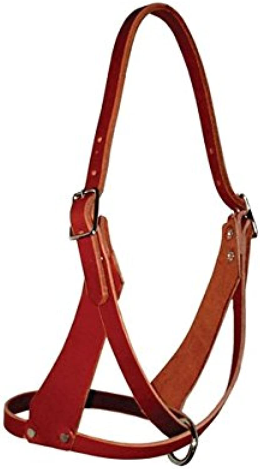 Amish USA Horse Tack Figure Eight Halter 5 8 Wide Full 975N080F