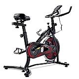 Delisouls Bicicleta de ejercicio para interiores con consola LCD, cómodo asiento ajustable y manillar duradero conveniente para entrenamiento cardiovascular