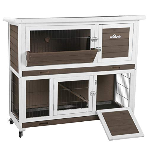 Rabbit Hutch Indoor 2 Story