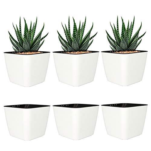 T4U 10cm Mini Plastik Selbstbewässerung Blumentopf Eckig Weiß 6er-Set für Miniaturpflanzen