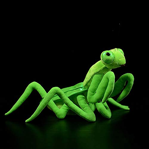 WWWL Peluche Juguetes de Felpa realistas Vida Real Insecto Mantis Relleno Animales Juguetes Suaves...