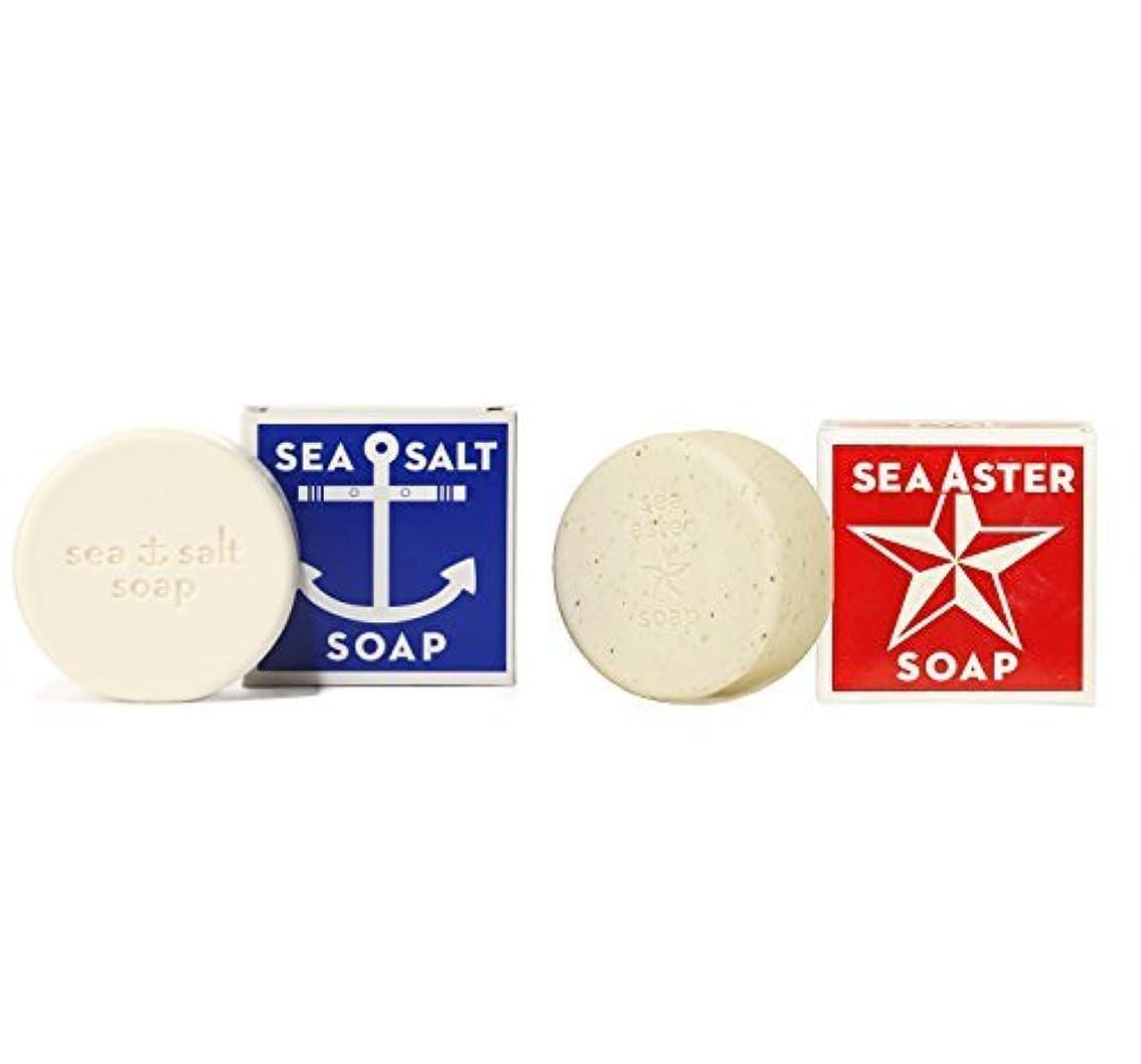 つぶすやろうレザーSwedish Dream Sea Salt + Sea Aster Soap Bar by Kala by Swedish Dream [並行輸入品]