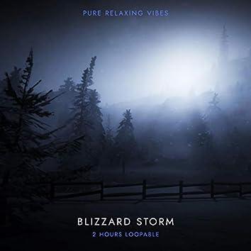Winter Storm Sounds