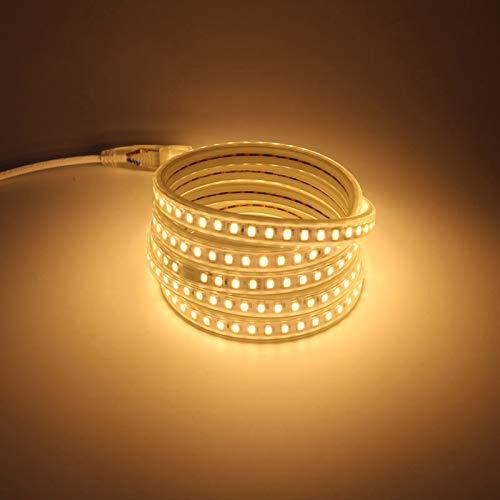 IP67 5730 bianco caldo giorno bianco freddo striscia di luce LED flessibile con spina di cavo di alimentazione standard europeo AC 220 V (bianco caldo, 3)