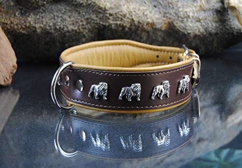 BULLYZEI breites Lederhalsband Englische Bulldogge 55cm x 4cm BRAUN-Natur