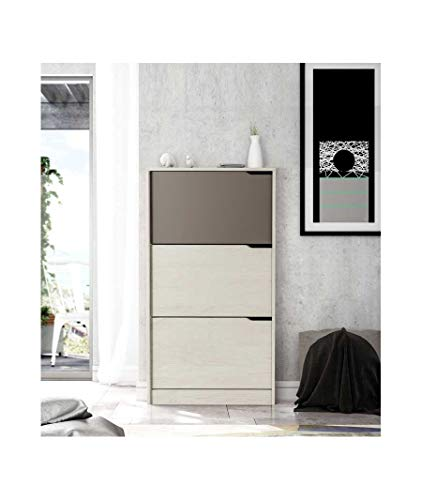 Habitdesign 00S878K - Zapatero 3 puertas, color Blanco Alpes y Basalto, medidas 120 x 75 x 24 cm de fondo