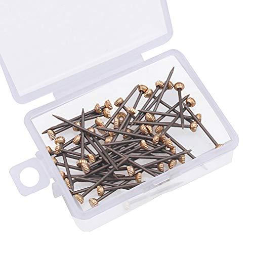 Stahl-Nägel, 60 Stück Kopfnägel aus schwarzem Kupfer Nagelhaken Pins Bild Nägel für Aufhängung Bilder Kopfstifte Nägel mit Aufbewahrungsbox aus Kunststoff für...