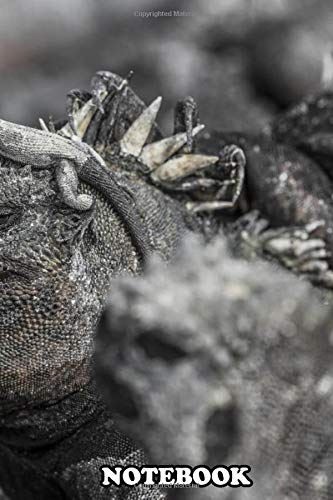 Notebook: Funny Miniature Lizard On Head Of Marine Iguana In The , Journal for Writing, College Ruled Size 6' x 9', 110 Pages