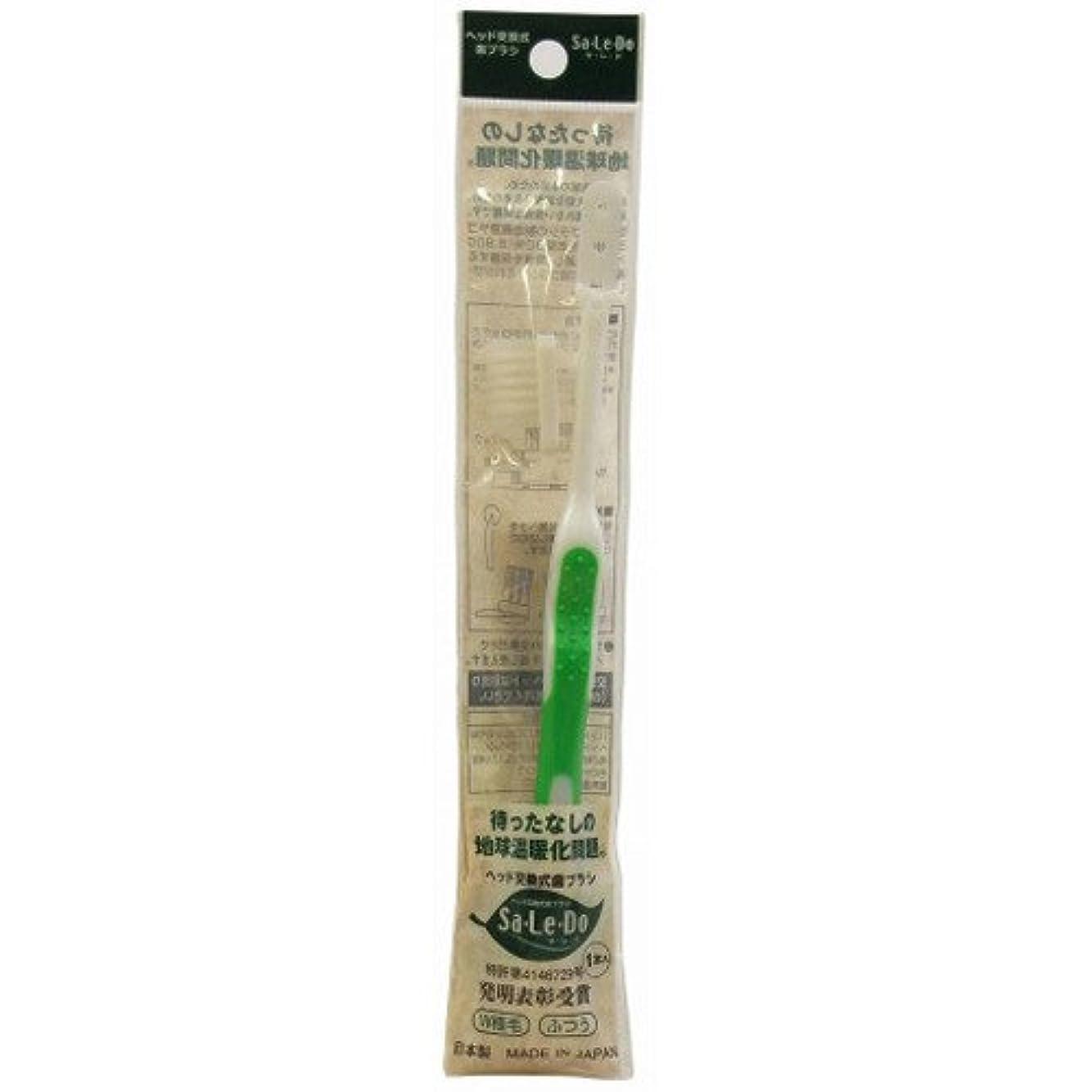 ボリューム作成者高揚したサレド ヘッド交換式歯ブラシ お試しセット レギュラーヘッド グリーン