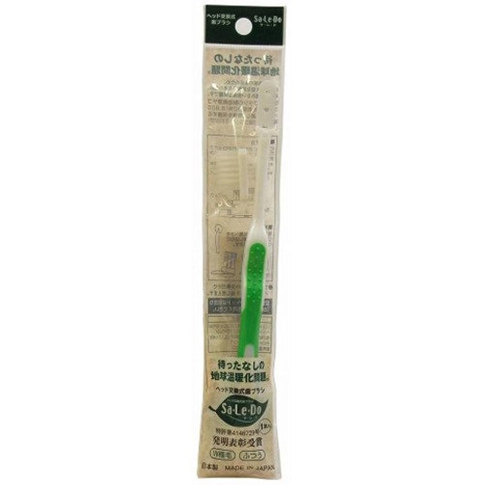 昼食肉屋鉄道サレド ヘッド交換式歯ブラシ お試しセット レギュラーヘッド グリーン