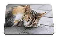 26cmx21cm マウスパッド (猫の睡眠の足の銃口) パターンカスタムの マウスパッド