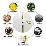 Kobwa - Generador de ozono, purificador de aire, purificador de aire ajustable para habitaciones, cocinas, casas con animales domésticos