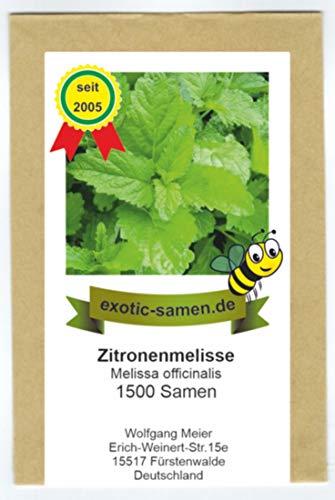 Zitronenmelisse - Melissa officinalis - 1500 Samen