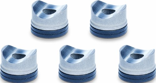 Graco 246453 RAC X One Seals Tip Gaskets for Airless Paint Spray Guns, 5-Pack