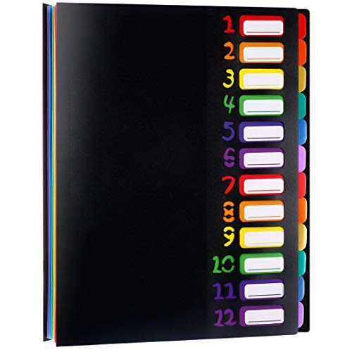 12 Pocket Expanding File Folder Project Sorter Heavy Duty Monthly Plastic Expandable Folder Organizer, A4 Letter Size, Multicolor(004)