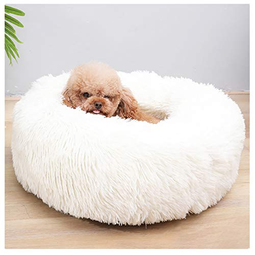 Smniao Hundebetten Plüsch Katzenbett Waschbar Haustierbett in Doughnut-Form Hundesofa Katzensofa Schlafplatz für Katzen Hund (60x60cm (Haustier unter 8kg), Weiß)