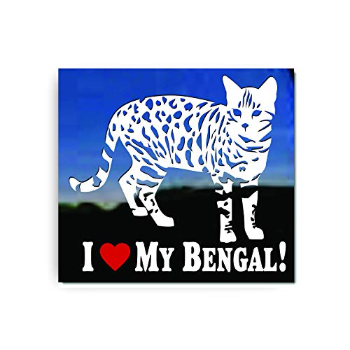 I Love My Bengal Cat...