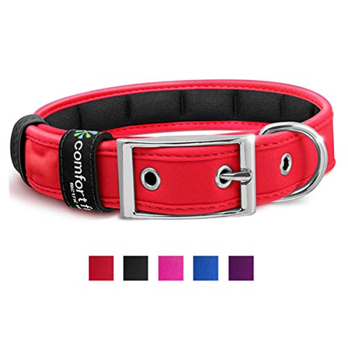 Metric USA Comfort Fit Soft Padded Dog Collar for Small Medium Large Dogs with Buckle Adjustable Comfortable Pet Collar, Red, Large (14.5