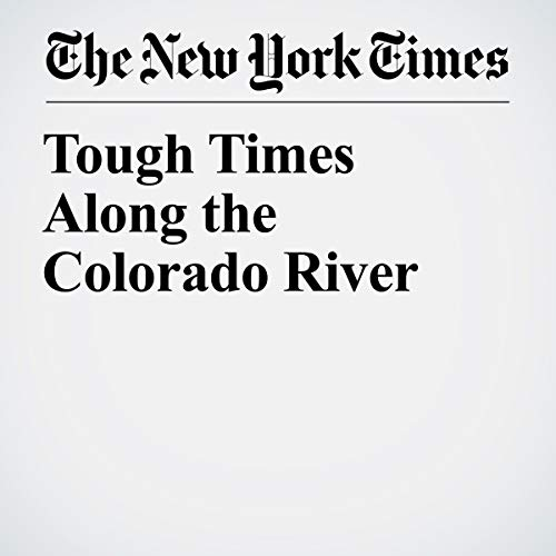 『Tough Times Along the Colorado River』のカバーアート