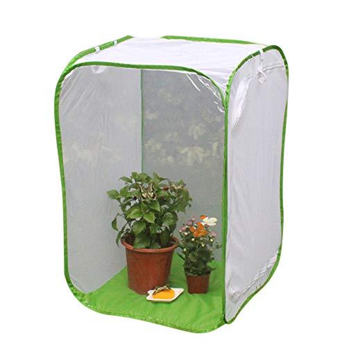 Mooyod Faltbares Insektenhotel Käfig Setzling Pflanze Lichtdurchlässigkeit Netz Zelt Gewächshaus, 30cmx30cmx30cm