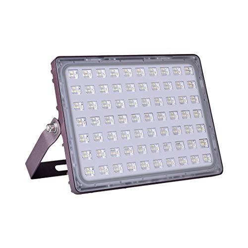 Viugreum Focos LED Exterior, luz de trabajo al aire libre impermeable super brillante IP66 para garaje, jardín, césped y patio (100W Blanco Frío)