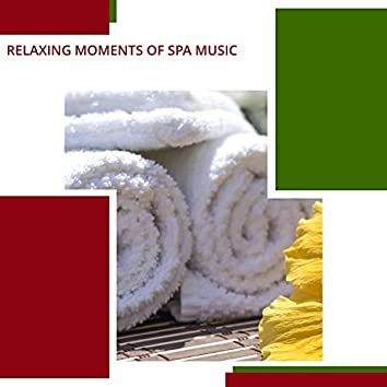 Relaxing Moments Of Spa Music