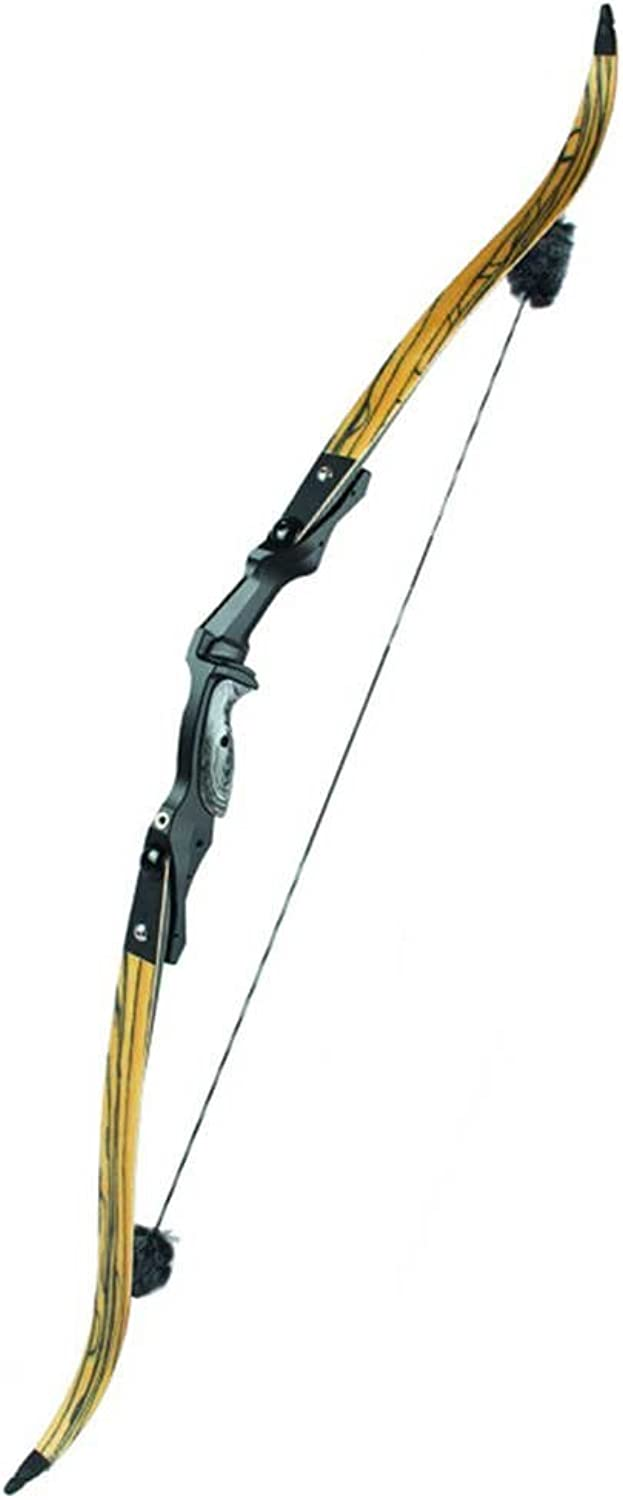 Archery Bow Takedown Recurve Bow 17  ILF Alumimun Riser Composites Limbs for Shooting and Hunting