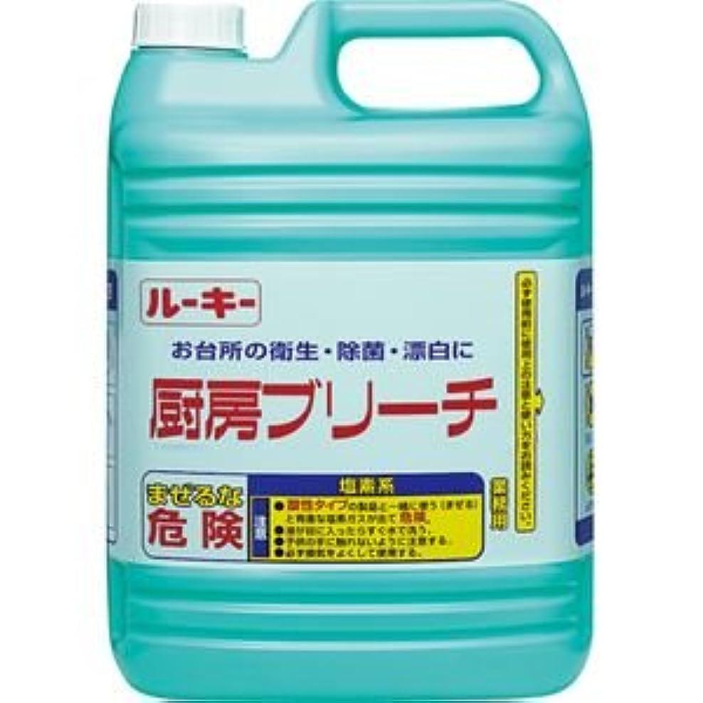 聴覚以来セラフ(まとめ) 第一石鹸 ルーキー 厨房ブリーチ 業務用 5kg 1本 【×5セット】
