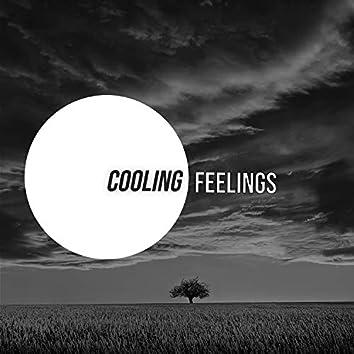 # 1 Album: Cooling Feelings