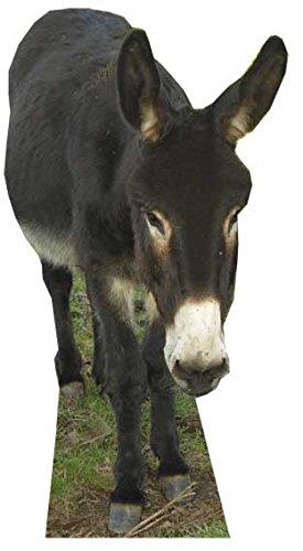 Pappaufsteller eines Esels von Star Cutouts