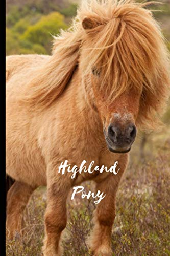Highland Pony: Journal and Notebook - Composition Size (6'x9') With 120 Lined Pages, Perfect for Journal, Doodling, Sketching and Notes