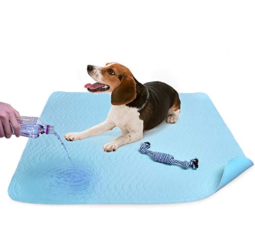 2 Stücke Waschbar Pee Pads für Hunde, Super Saugfähig Pet Puppy Training Matte 91,4 x 78,7 cm mit Hund kauen Toy Schnelltrocknend, Maschinenwaschbar, Wiederverwendbar