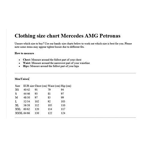 Mercedes Benz AMG Petronas F1 Men's 2021 Team Polo Shirt (M, Black)