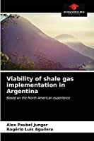Viability of shale gas implementation in Argentina