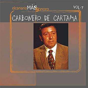El Canario Más Sonoro, Vol. 7